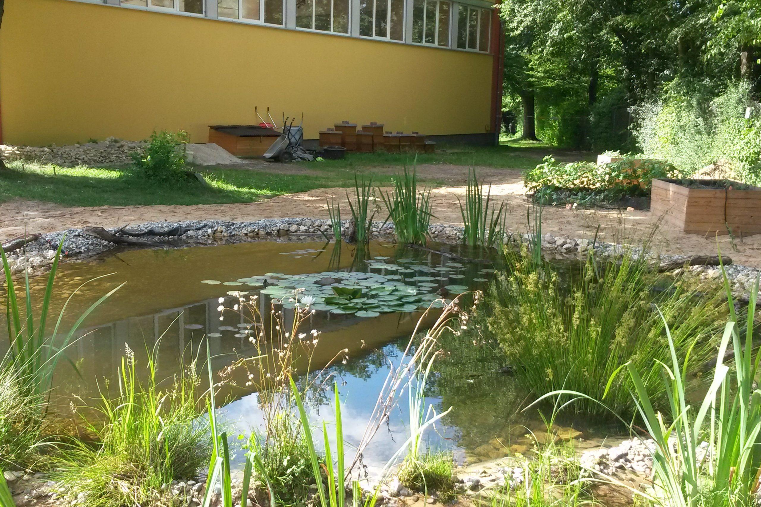 Schulgarten-1